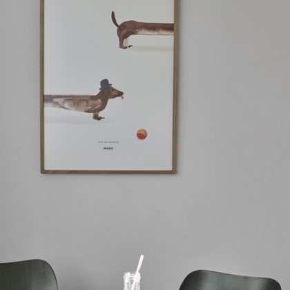 DOUG THE DACHSHUND | The Room Living
